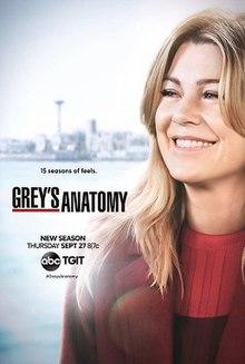 220px-grey's_anatomy_season_15_poster