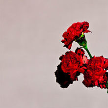 220px-John_Legend_Love_in_the_Future